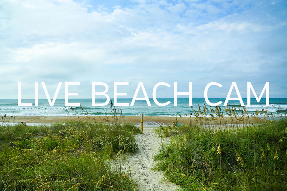 love beach camera crystal coast